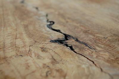 Modne taborety Afel - drewniane