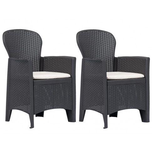 Zdjęcie produktu Fotele ogrodowe z poduszkami Campos 2 szt - brązowe.